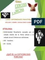 cisticercosis porcina.pptx