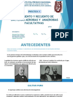 SEMINARIO-TERMINADA.pptx
