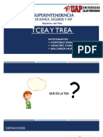 GRUPO TEA Y TREA ECONOMICA.pptx
