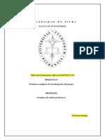 Carátula_de_Presentación_PO.docx