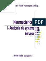 Le Système Nerveux_Université Paris 8