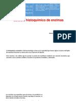 histoquimica enzimatica