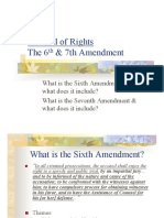 6th 7th Amendment101