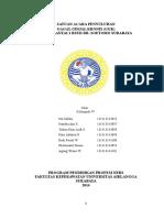 SAP IRD lt 1-CKD