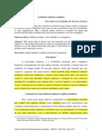 A indústria cultural evangélica .pdf