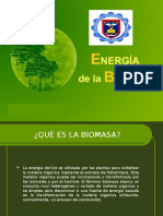 Biomasa Expo Final