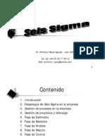 0Excelente SeisSigmaChampion.pdf