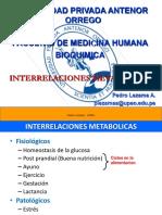 interrelaciones metabolicas upao