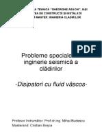 Probleme Speciale de Inginerie Seismica a Cladirilor