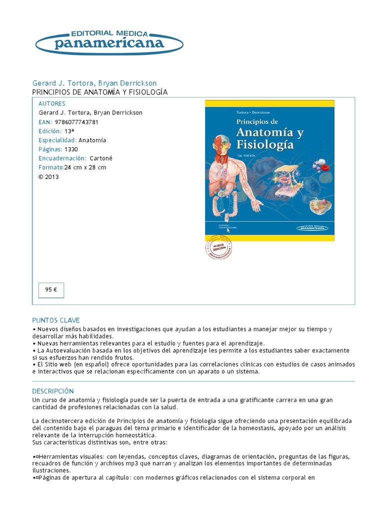 Lujo Anatomía Página Web Interactiva Colección - Imágenes de ...