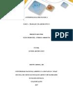 Fase 3 – Trabajo Colaborativo 3-Grupo 403018A_360