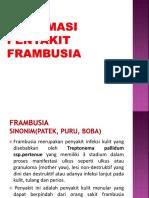 8. FRAMBUSIA