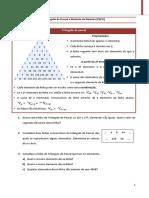 FW 6 - Triangulo de Pascal e Binómio de Newton