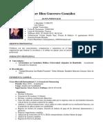 Sintesis Curricular Hamer (1)
