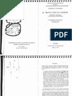 Kaufman_El proto tzeltal tzotzil 1972 (search) .pdf