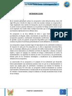 Aeropuerto Arequipa - Trabajo Final.docx