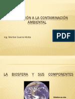 Introducción a la Contaminación Ambiental.pptx