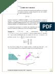 S11_CAMBIO_VARIABLES (1).pdf
