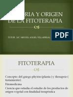 Historia y Origen de La Fitoterapia