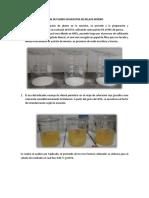 INFORME DETERMINACION DE PLOMO.docx