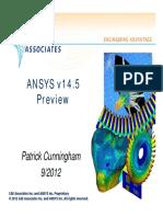 CAEA_UGM2012_v145_preview.pdf