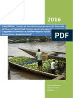 d11 Informe Estudio de Mercado