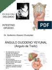 (27) Int. Delgado - Int. Grueso