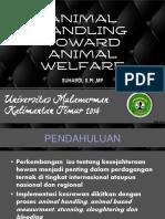 Handling Ternak Potong