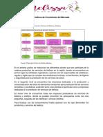 Anexo 3 Graficos de Crecimiento Del Mercado