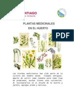 Plantas Medicinales En34 El Huerto