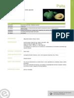 PALTA.pdf