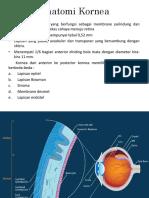 Anatomi Kornea.pptx
