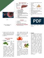 Leaflet Hepatitis