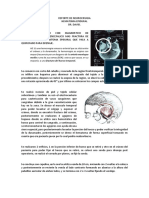 Reporte de Neurocirugia