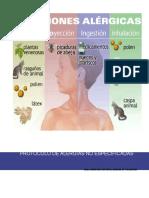 Protocolo de Alergia No Especificada(1)
