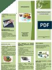 folleto de access.docx