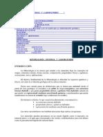 MINERALOGÍA  GENERAL  Y  LABORATORIO1.docx