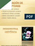 tiposdereceptores-110823204826-phpapp01.pptx