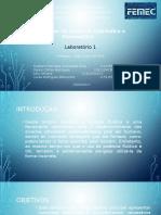 L1 GustavoHenrique LucasAbbruzzini JulioOliveira DaniloCortes (1)