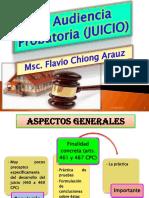 Prof Chión 21816 Audiencia Probatoria