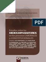 10 Estudios Sobre Los Medios Impugnatorios en Los Procesos