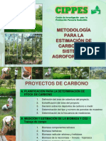 Metodo Biomasa y Carbono-saf