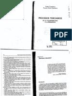 ProcesoTerciario.pdf