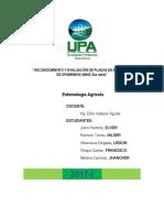 INFORME-N-7.pdf
