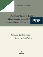A Morte é o Fim Do Homem inteiro mas não inteiramente Teologia da morte em Ruiz de la Peña