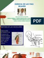 CLASE EMERGENCIA DE LAS VIAS BILIARES.pptx