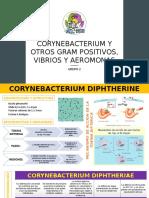 CORYNEBACTERIUM Y OTROS GRAM POSITIVOS, VIBRIOS Y.pptx