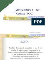 EGO.ppt
