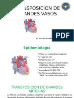 TRANSPOSICION DE GRANDES VASOS (1).pptx