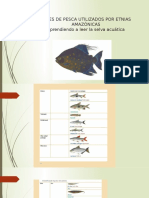 Artes de Pesca Utilizados Por Etnias Amazónicas